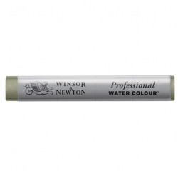 Winsor & Newton Professional Watercolour Stick - Davy's Grey (217)